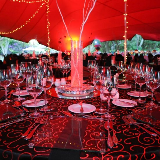 HiSide Events Decor (100)