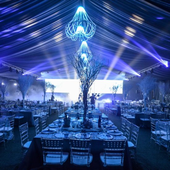 HiSide Events Decor (102)