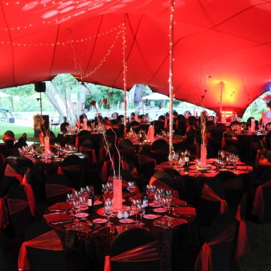 HiSide Events Decor (99)